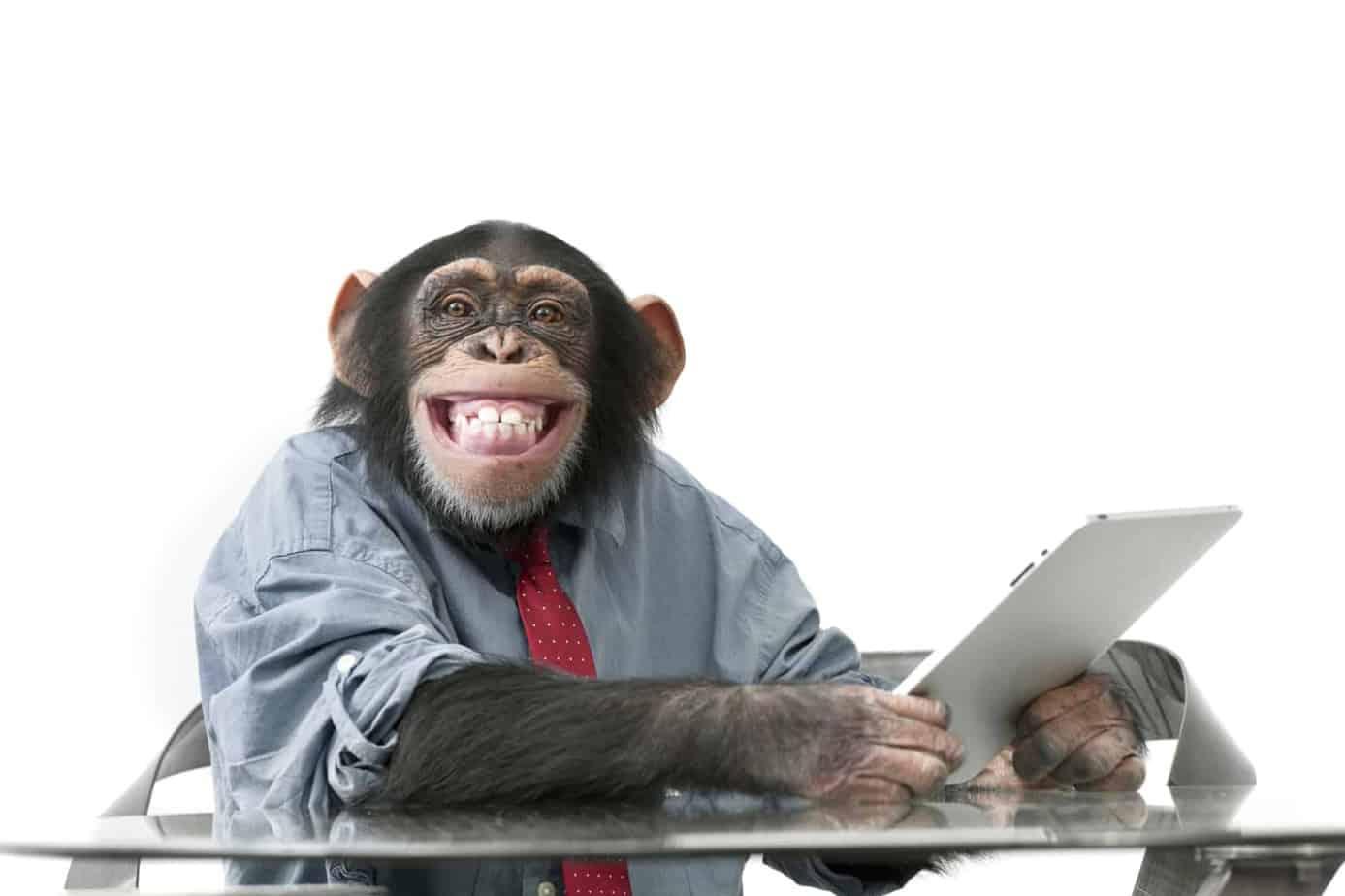 monkey 1 1